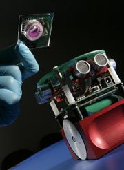 robotandbrain.jpg