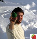 strawberry energy intervju milos milosavljevic automatika.rs