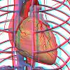 uvodna electic power human body proizvodnja elektricne energije automatika.rs